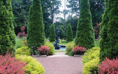 Žiadam o úpravu záhradky pre svokru